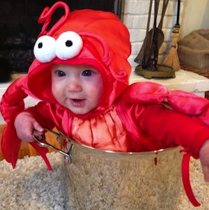 Baby Lobster Costume  sc 1 st  Best Halloween Costumes & 34 Babies in Halloween Costumes from Huffington Post - Where to Find