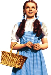 Wizard of Oz - Adult Dorothy Costume