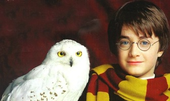 Harry Potter Kids Costumes for Halloween