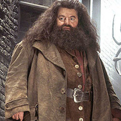 Harry Potter Hagrid Costume