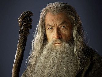 LOTR Gandalf Wizard Costume