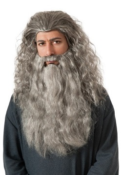 Lord of the Rings Gandalf Wizard Costume beard