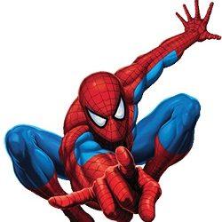 Marvel Comics Spiderman Costume