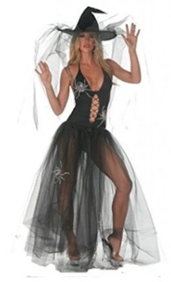 Celebrity Halloween - Spider Witch Halle Berry Costume