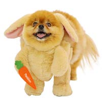Easter Pet Costume - Carrot