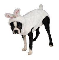Easter Pet Costume - Bunny Hoodie