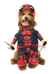 Marvel Deadpool Costume for Dogs