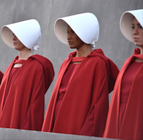 Handmaid's Tale Costume Ideas for Adults