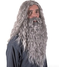 Harry Potter Albus Dumbledore Costume Wig