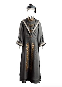 Harry Potter Dumbledore Costume Robe
