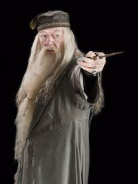 Harry Potter Albus Dumbledore Costume Ideas