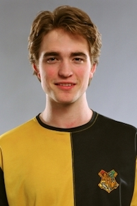 Harry Potter Cedric Diggory Huffleduff Costume Ideas