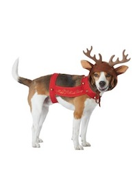 Christmas Pet Costume - Reindeer Costume