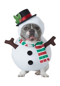 Christmas Snowman Costume for Dogs