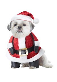 Christmas Pet Costume - Santa Dog Costume