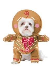 Christmas - Gingerbread Dog Costume