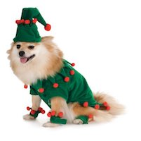 Christmas Pet Costume - Elf Costume for Dogs