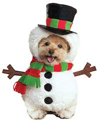 Christmas Pet Costume - Snowman costume for Dogs