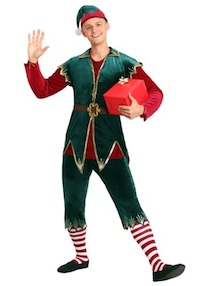 Christmas Festive Elf Costume