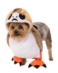 Star Wars Pet Costume Ideas Porg