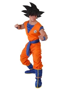 Dragon Ball Z DBZ Goku Costume for Adults