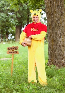 Adult Winnie the Pooh Costume
