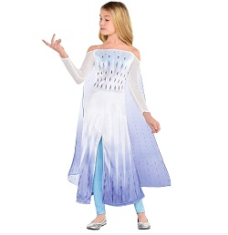 Frozen Queen Elsa Costume for Kids
